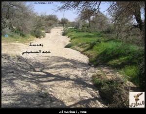 وادي في حريملاء